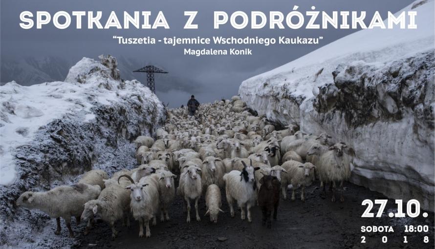 zdjęcie ze stadem owiec i baranów
