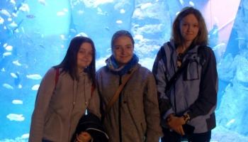 trzy dziewczynki na tle oceanarium